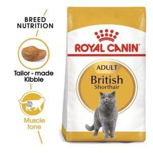 Royal Canin British Shorthair 33
