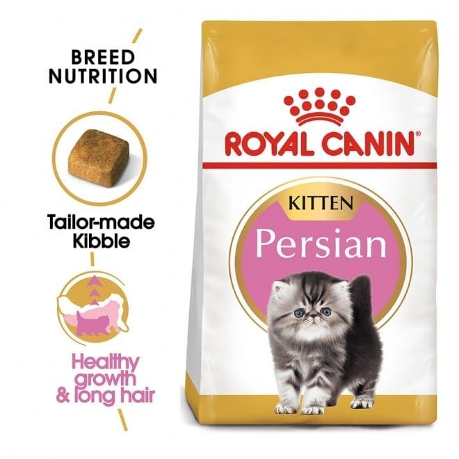 Royal Canin Perser Kitten