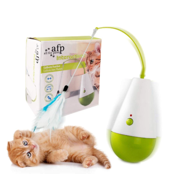 AFP interactive culbuto katteleke