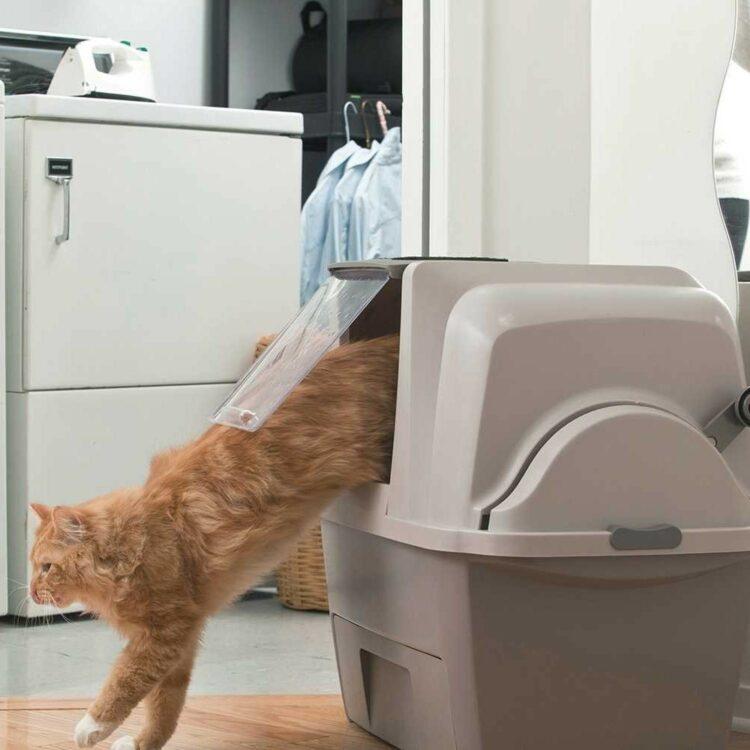 Catit SmartSift Litter Box-kattetoalett