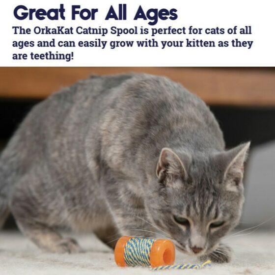 Petstages OrkaKat Catnip Spool katteleke